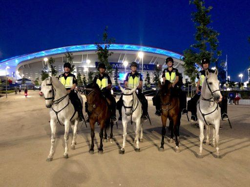servicio policial unidad caballería policía nacional