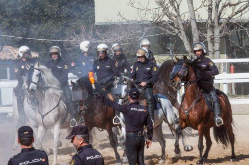 dispositivo servicio policial unidad caballería policía nacional